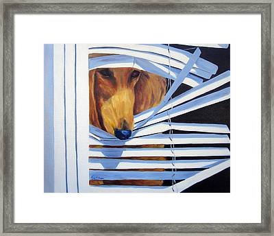 Home Alone Framed Print by Terry  Chacon