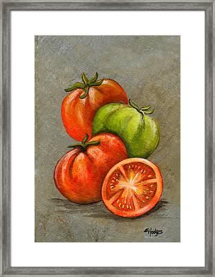 Home Grown Tomatoes Framed Print by Elaine Hodges