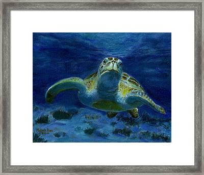 Honaunau Honu Framed Print by Michele Ross