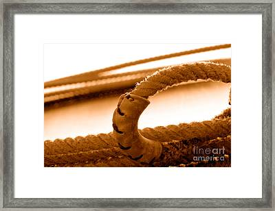 Hondo - Sepia Framed Print by Olivier Le Queinec