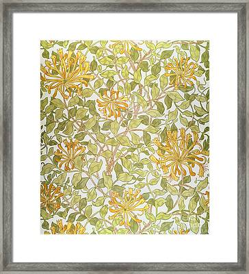 Honeysuckle Design Framed Print by William Morris