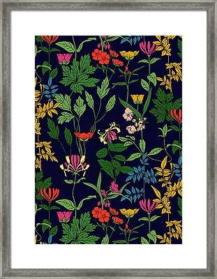 Honeysuckle Floral Framed Print by Sholto Drumlanrig