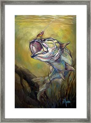 Hooked Framed Print by Tom Dauria