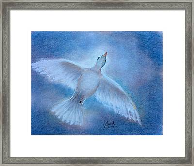 Hope And Peace Framed Print by Laila Awad Jamaleldin
