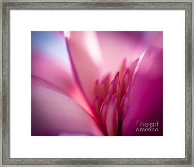Hope Framed Print by Jan Bickerton