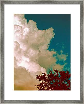 Hope Framed Print by Wendy J St Christopher
