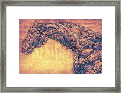 Horse Abstract Framed Print by Jack Zulli