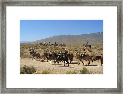 Horse Drive From June Lake To Bishop California Framed Print by Christine Till