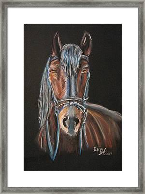 Horse Framed Print by Eli Marinova