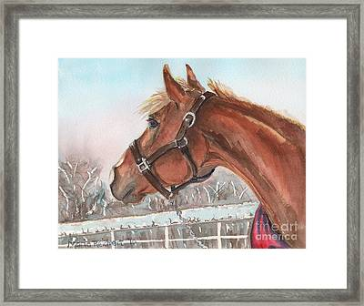 Horse Head Painting In Watercolor Framed Print by Maria's Watercolor