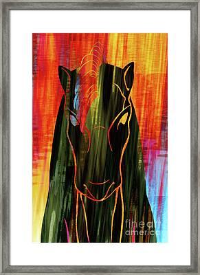 Horse Head Framed Print by Robert Ball