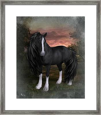 Horse Of Elegance Framed Print by Ali Oppy
