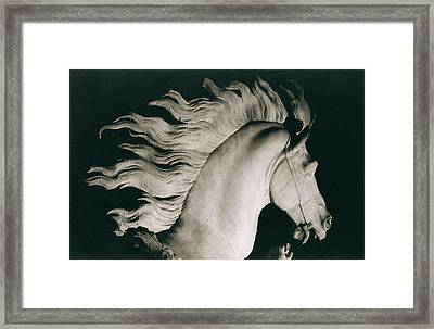 Horse Of Marly Framed Print by Coustou