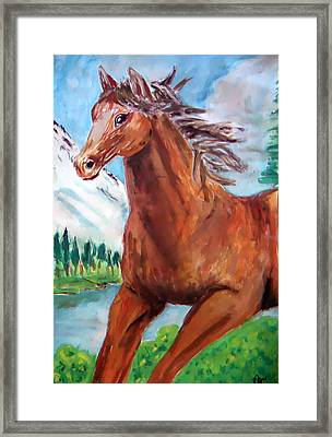 Horse Painting Framed Print by Bekim Axhami