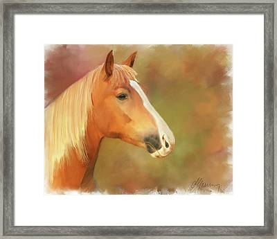 Horse Painting Framed Print by Michael Greenaway
