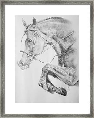 Horse Pencil Drawing Framed Print by Arion Khedhiry