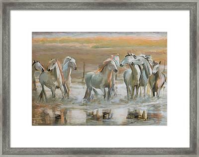 Horse Reflection Framed Print by Vali Irina Ciobanu