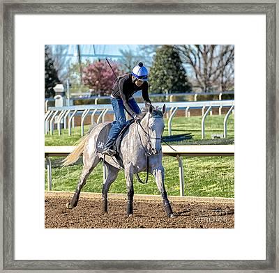 Horse Training Framed Print by Catherine Balfe