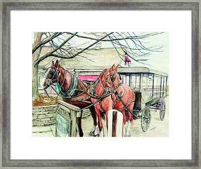 Horses And Carriage From Intercourse Pensylvania Framed Print by Morgan Fitzsimons