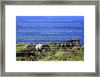 Desiderata #2 Framed Print by Aidan Moran