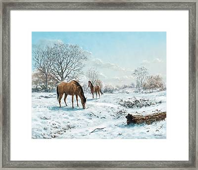 Horses In Countryside Snow Framed Print by Martin Davey