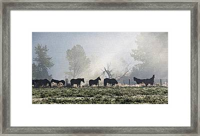Horses In The Mist Framed Print by Marion McCristall