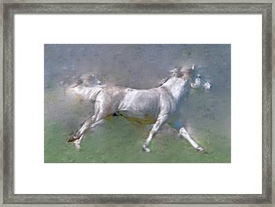 Horses On The Move Framed Print by Patricia Keller