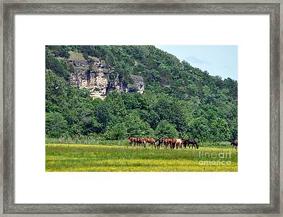 Horses On The Rubideaux Framed Print by Marty Koch