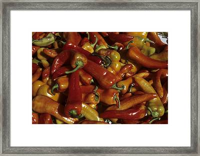 Hot Red Peppers Sit In A Bin Framed Print by Taylor S. Kennedy