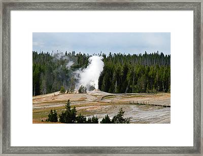 Hot Steam Dog Yellowstone National Park Wy Framed Print by Christine Till