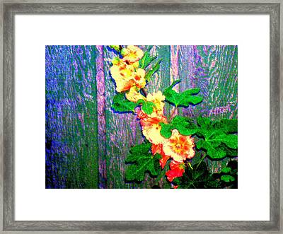Hot Summer Afternoon Framed Print by  Connie Valasco