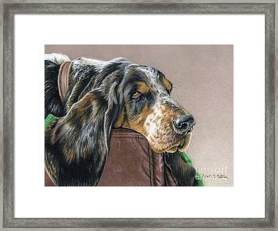 Hound Dog Framed Print by Sarah Batalka