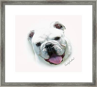 How Much Is That.... Framed Print by Cecil Fuselier