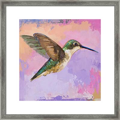 Hummingbird #2 Framed Print by David Palmer