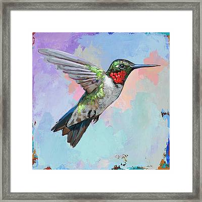 Hummingbird #4 Framed Print by David Palmer