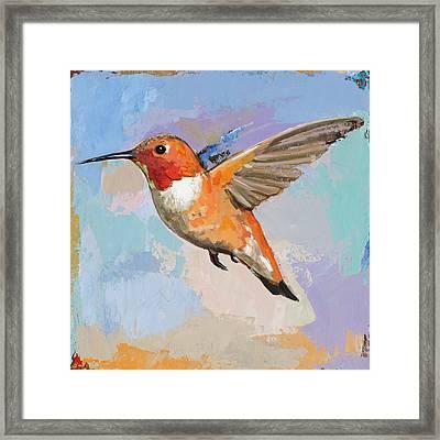 Hummingbird #7 Framed Print by David Palmer