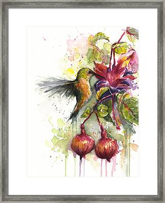 Hummingbird And Fuchsia Framed Print by Olga Shvartsur