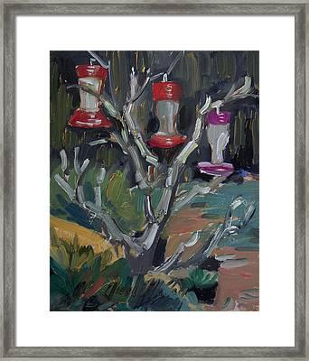 Hummingbird Feeders In Idyllwild Framed Print by Diane McClary