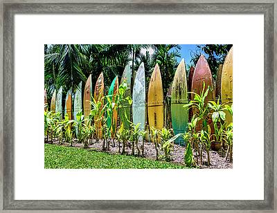 Hurricane Barrier Framed Print by Kelley King