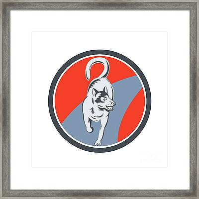 Huskie Sled Dog Circle Retro Framed Print by Aloysius Patrimonio