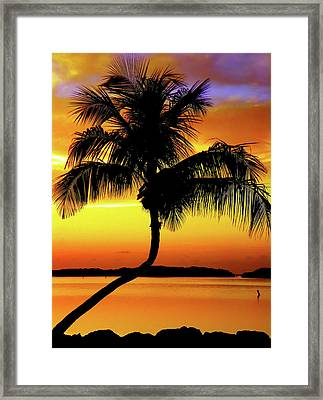 Hypnotic Framed Print by Karen Wiles