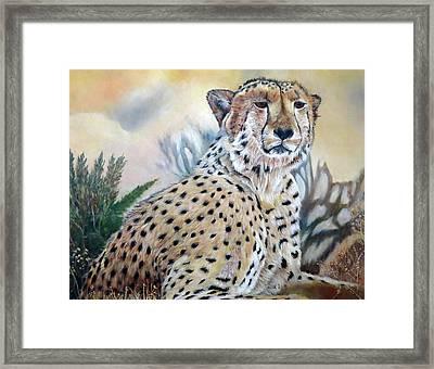 I Am Cheetah 2 Framed Print by Marilyn  McNish