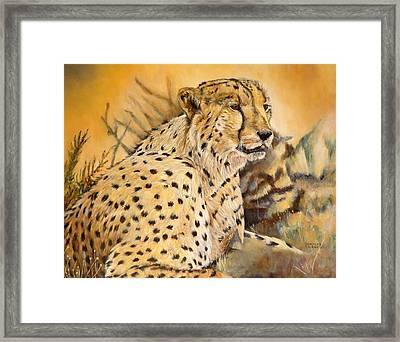 I Am Cheetah Framed Print by Marilyn  McNish
