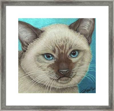 I Am Siamese If You Please Framed Print by Beverly Fuqua