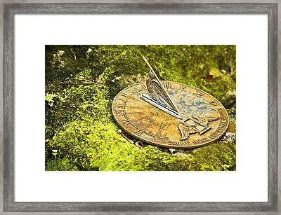 I Count None But Sunny Hours Framed Print by Carolyn Marshall