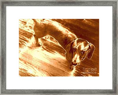 I Did Not Mean To Do It Framed Print by Elizabeth Hoskinson