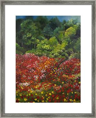 I Dream Of Poppies Framed Print by Carol Sweetwood