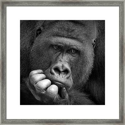 I Had A Dream .... Framed Print by Antje Wenner