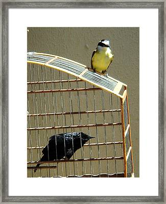 I Honestly Do Not Believe The World Is Bigger Than This Framed Print by Paulo Zerbato