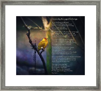 I Know Why The Caged Bird Sings By Maya Angelou Framed Print by Maria Angelica Maira